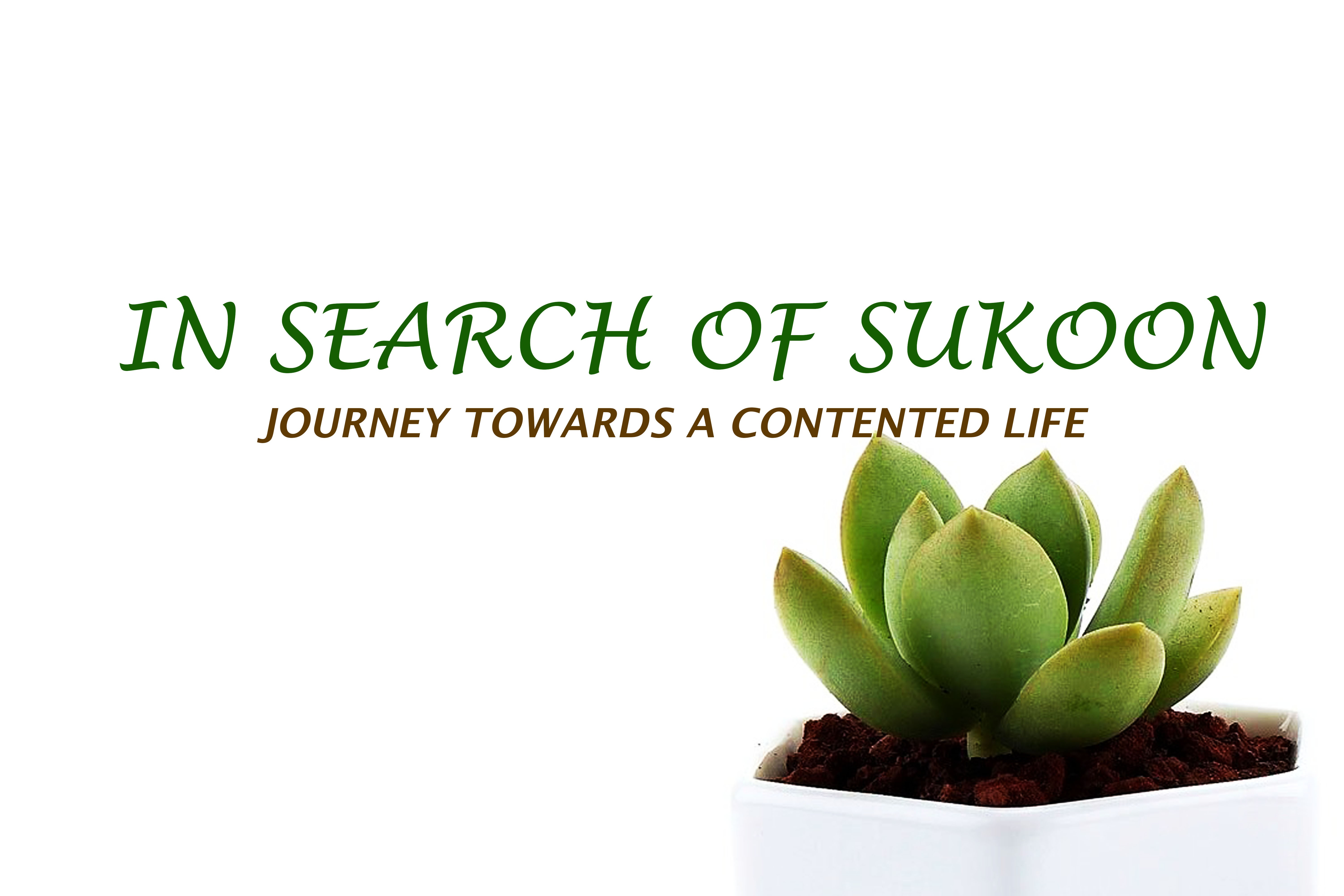 In Search of Sukoon-A Lifestyle Blog